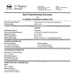 BC-Company-Summary-JY-Knows-IT-Business-Consulting-DBA.jpg